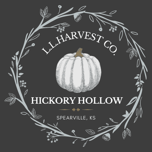 Hickory Hollow Pumpkin Patch